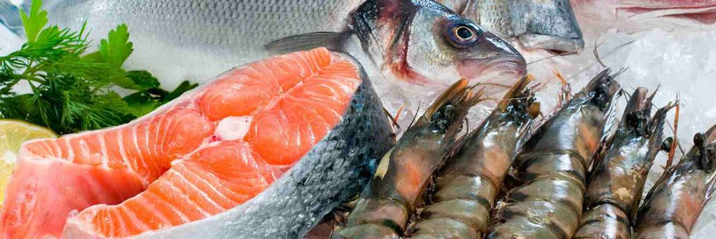 Premier Marine Food, Cuttle Fish, Seerfish, Shrimp Block, Squid